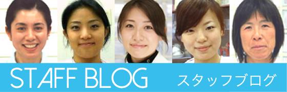 staff-blog